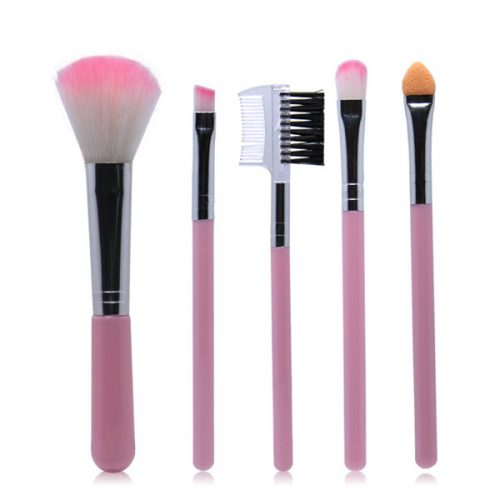 Wholesale Makeup Brush 5Pcs Mini Makeup Brush Set Cosmetic Makeup Tool